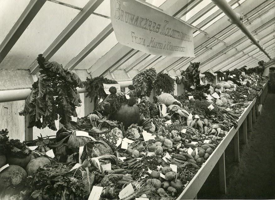 Grönsaksutställning 1929 då det här bordet prisbelönades vid Allmänna Trädgårdsutställning